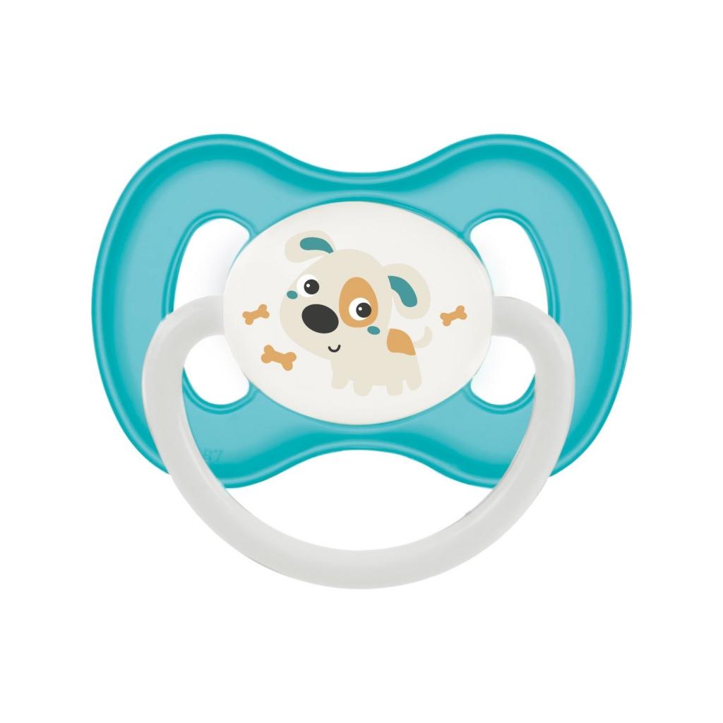 Купить Canpol Пустышка симметричная силиконовая от 0 до 6 месяцев, бирюзовый, 1 шт. (Canpol, Bunny & Company)